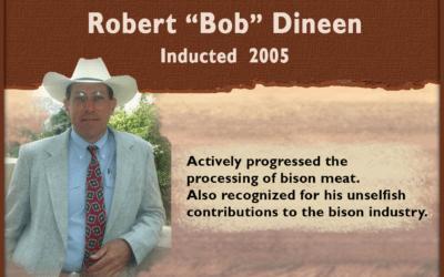 Bob Dineen