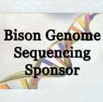 Bison Genome Research