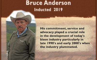 Bruce Anderson
